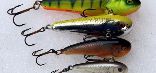 02-the-only-one-vertical-wobbler-on-the-market-salmo-chubby-darter