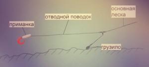 otvodnoy-povodok-460x210