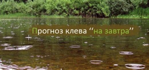 YiV1DAZqLG4